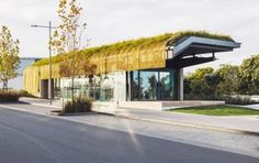 A Maori-inspired green 'cloak' tops an airport building in Auckland, New Zealand