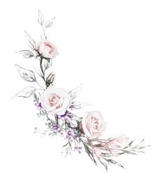 floral illustration, Leaf and buds. Botanic composition with flowers for wedding or greeting card. branch of flowers - roses, isolated on white background Watercolor Cards, Watercolor Illustration, Watercolor Flowers, Watercolor Tattoo, Painted Cakes, Picture Logo, Arte Floral, Floral Illustrations, Flower Frame