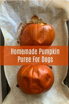 If you're having trouble finding canned pumpkin in the grocery stores this year, no need to worry! It's super easy to make your dog homemade pumpkin puree with small pie pumpkins and they will probably like it even more! You can also use this to make pumpkin dog cookies and frozen pumpkin dog treats. Homemade Pumpkin Puree For Dogs - My Brown Newfies