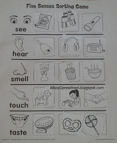 A, Bee, C, Preschool: Cinco de Mayo and Five Senses Unit
