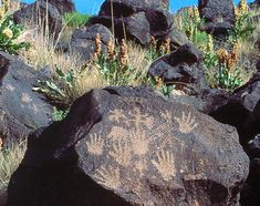 North American Petroglyphs - Petroglyph National Monument, New Mexico