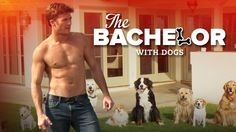 Scott Eastwood is The Bachelor for Funny or Die Video