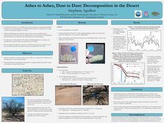 GPSC Student Showcase 2011: Ashes to Ashes, Dust to Dust: Decomposition in the Desert