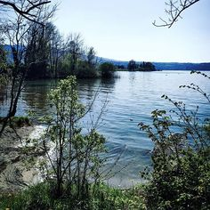 The island season has begun. Lake Water, Sky, In This Moment, River, Seasons, Island, Mountains, Landscape, Nature