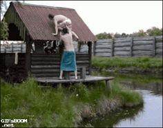 Funny community - Best of GIFs, Photos, video – Сообщество – Google+