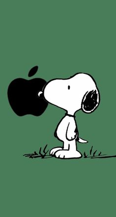 Pin by Gladys Christian on Education Snoopy Snoopy Et Woodstock, Peanuts Snoopy, Snoopy Comics, Apple Logo Wallpaper Iphone, Wallpaper Iphone Cute, Wallpaper Bonitos, Snoopy Images, Snoopy Wallpaper, Snoopy Quotes