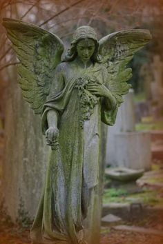 Angel - City of London Cemetery © Jeane Trend-Hill Cemetery Angels, Cemetery Statues, Cemetery Art, Recoleta Cemetery, Memes Arte, Old Cemeteries, Graveyards, Garden Angels, Angels Among Us
