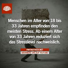 Faktastisch - Stress