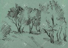 42638956-boschetto-di-alberi-a-foglie-caduche-dipinto-a-matita-grafite-su-sfondo-verde-schizzo-disegnato-a-ma-Archivio-Fotografico.jpg (1300×920)