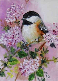 Art: In the Lace of Thyme by Artist Paulie Rollins Pretty Birds, Beautiful Birds, Watercolor Animals, Watercolor Art, Bird Drawing For Kids, Acrylic Painting Flowers, Bird Illustration, Bird Drawings, Bird Pictures