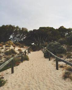 Thought I would post a non beach photo  || #lifeasahayesinaussieland #rottnestisland #traveltheworld #youngandmarried #Australia || by elizabethmariemakeup http://ift.tt/1L5GqLp