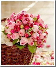 Flores para o seu dia Flores para o seu dia! Tudo de maravilhoso! Força, coragem, fé, luz, amor, esperança... BOM DIA!