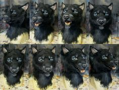 Awesome wolf/werewolf mask!