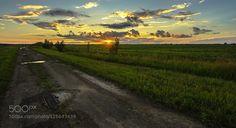 Sunset over the field. by Nikolay0065. Please Like http://fb.me/go4photos and Follow @go4fotos Thank You. :-)
