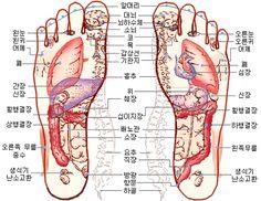 손 발 건강 발이 보내는 이상신호들은 셀 수 없이 많지만, 그 중 가장 대표적인 것이 발의 냉증이다. 냉증은 한의원을 찾는 환자들이 가장 많이 호소하는 증상이기도 하다. 몸은 덥고 뜨거운데 발은 차갑다 못해 시린 이 증상은 계절을 가리지 않을 뿐더러,