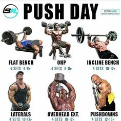 Weight benches are a central part of any weight training program. Not only are many weight training benches of the sturdiest and highest quality available, but Push Day Workout, Push Pull Legs Workout, Workout Splits, Best Workout Routine, Gym Workout Tips, Push Pull Workout Routine, Workout Regimen, Bodybuilding Training, Bodybuilding Workouts