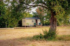 Abberton Shepherd's Hut Retreat - Rustic charm meets luxury in Worcestershire