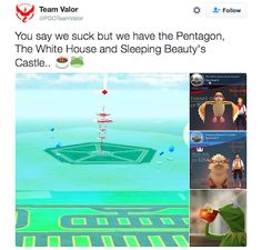 pokemon-go-memes-team-valor-gyms