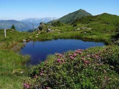 Sommer+in+den+Kitzbüheler+Alpen