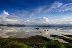Ven y conoce el sorprendente pueblo mágico de Cuitzeo y disfruta del espejo de agua que se hace en su Lago, es maravilloso! Te invita el Hotel Best Western en Morelia a 30 mins de Cuitzeo. www.bestwestern.com.mx/