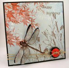 dragonfly 3d card