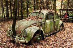 Arboles y hojas caídas cubren el que se supone que fue el primer coche que cruzó el Muro de Berlín tras su caída