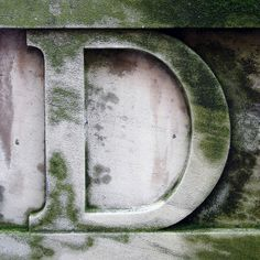 letter D by Leo Reynolds, via banner White Letters, Letters And Numbers, Sign Letters, Alphabet Songs, Alphabet Letters, Alphabet Photography, D Book, Sometimes I Wonder, Little Bit