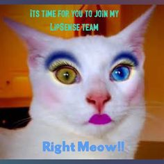I am looking for 3 people to #joinmyteam. Think about it gals and guys!!  this could be a life changer. Earn extra money while playing with makeup!  It's every girls childhood dream.  take the opportunity, we will rock this together!  You #makeyourownhours #workfulltimeorparttime #playwithmakeup #sellwhatyoulove #earnmoneyfromhome #joinagreatcompany #senesisterhood #senesisters #lipsense #senegence SeneGence ID#238719 www.facebook.com/headturninlipsbychrista  www.senegence.ca/LipsSoKissable