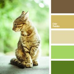 Sunny colours of this palette will look good in the room of a young child, because they are bright and cheerful. We recommend to use it in such proportions. Warm Colour Palette, Green Palette, Pastel Palette, Color Blending, Color Balance, Color Harmony, Cat Colors, Room Colors, Color Swatches