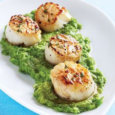 Seared Scallops Mint Vinaigrette
