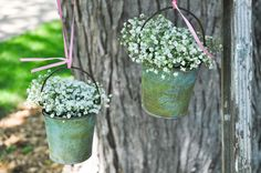 Hanging tins with baby's breath