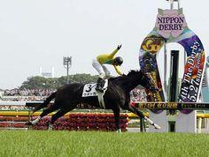 日本ダービー・G1/'07競馬G1プレイバック/競馬情報