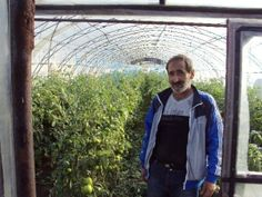 Khoren from Ukraine, greenhouse lord