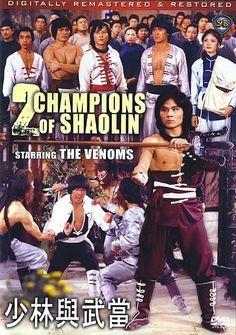 2 champions of Shaolin
