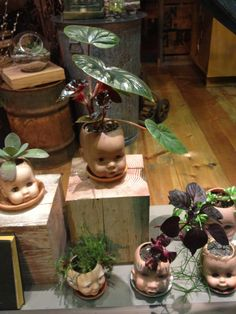 Doll heads as planters