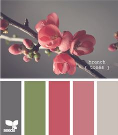trying to find the perfect salmon pink for Sydney's room...love the middle one!