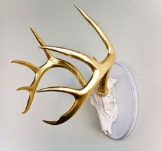 DEER - Another gorgeous piece from Bradley Streeper...