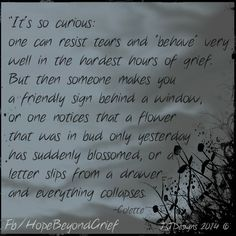 Grief is curious... https://www.facebook.com/HopeBeyondGrief This is so true.