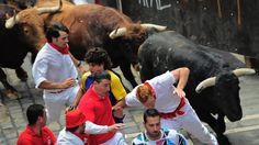 In Pictures: Running of the Bulls Running Of The Bulls, Man Games, Photo Galleries, Backyard Ideas, World, Animals, Live, Pictures, Party