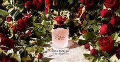 Новый аромат Dolce Rosa Excelsa. Обсуждение на LiveInternet - Российский Сервис Онлайн-Дневников