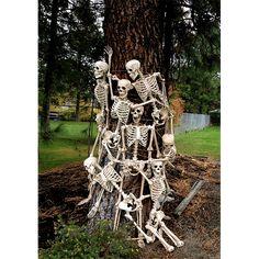 The original Pose-N-Stay skeleton by Seasons. A fun decorative halloween decoration Halloween Skeletons, Funny Halloween, Halloween 2020, Fall Halloween, Halloween Ideas, Halloween Party, Skeleton Decorations, Halloween Decorations, Dog Lover Gifts