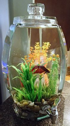 Fish Bowl Decoration. Instead of using the standard boring fish bowl. Purchase a Lemonade/Sweet Tea dispenser and give your fish a classier place to live.