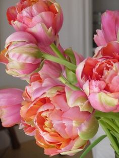 Beautiful orange and pink peonies. Reminds me of sorbet!
