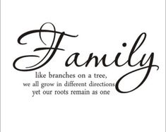 Family Like Branches on A Tree Large Vinyl Wall Decal Housewares Living Room Family Room Gallery Photo Wall Family Quote Home Decor
