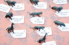 zoo wedding = everyone has a animal as their place card