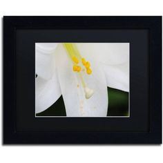 Trademark Fine Art Adore You Canvas Art by Monica Mize, Black Matte, Black Frame, Size: 11 x 14
