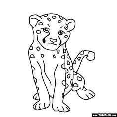 Animal Baby Cheetah S For Coloring Pages Printable And Coloring Book To  Print For Free. Find More Coloring Pages Online For Kids And Adults Of  Animal Baby ...
