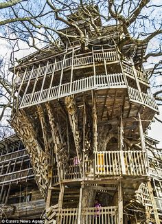The tree house in Crossville Tennessee, the tallest in the world and it has taken 11 years for builder Horace Burgess to finish    Read more: http://www.dailymail.co.uk/news/article-2123686/Worlds-tallest-tree-house-reaches-stories-high.html#ixzz1rAw6uwrp