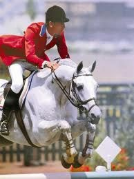 Abdullah -Another Amazing Horse for the Show Jumping World