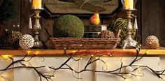 Branches with lights, great fall decor